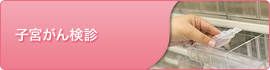 子宮がん検診・子宮頸がん予防ワクチン